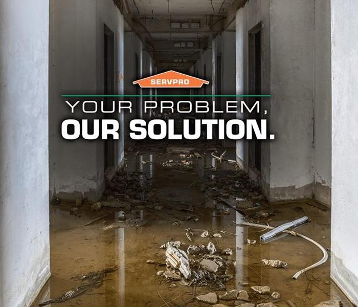 Commercial Commercial Water Damage Restoration Service