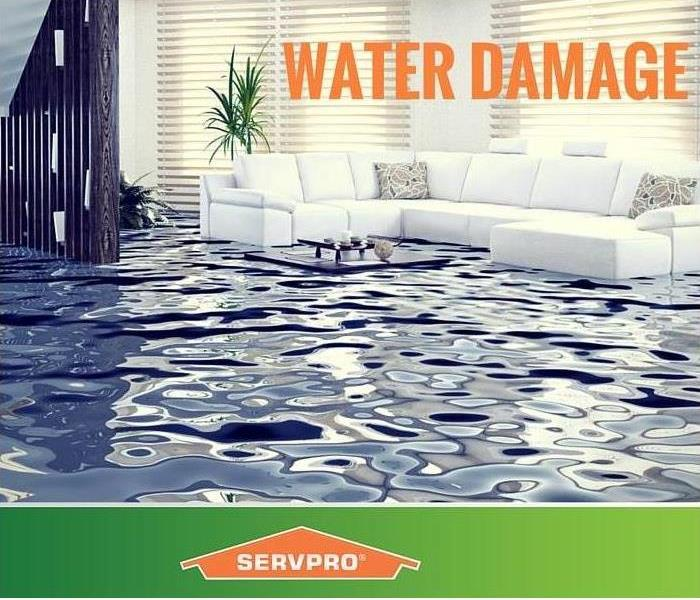 What To Do And Don T Do After A Water Damage Servpro Of