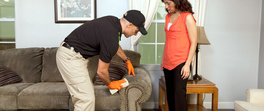 Rohnert Park, CA carpet upholstery cleaning