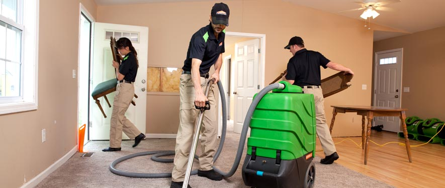 Rohnert Park, CA cleaning services