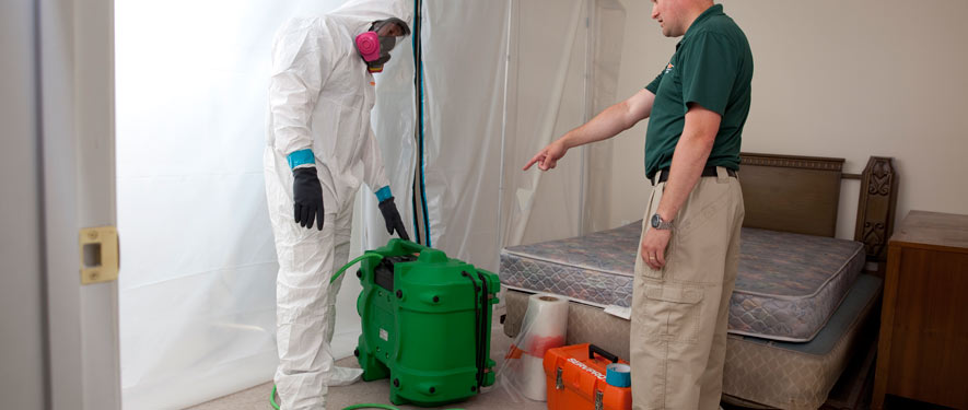 Rohnert Park, CA mold removal process